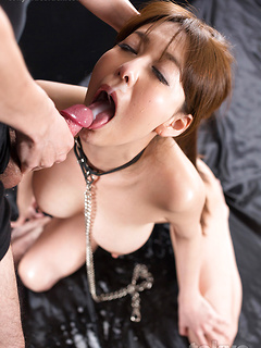 Collared Japanese cocksucker Asagiri Akari takes his load in her mouth and rubs it all over her big tits